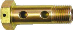 3. Banjo bolt double BB 14/2
